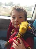 Lost Cuddly toy on 07 Apr. 2018 @ Train from Horsham to Southampton Central