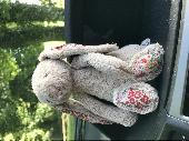 Found Cuddly toy on 17 May. 2018 @ Diggers field, Anstey Park, Alton