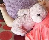Lost Teddy bear on 10 May. 2018 @ Orlando