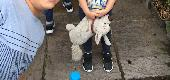 Lost Toys & Games on 02 Jun. 2018 @ Newquay or Newport gwent