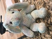 Found Teddy bear on 29 Jun. 2018 @ Franklin Falls, WA