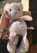 Found Teddy bear on 06 Jul. 2018 @ Mayfield Avenue, Cardiff