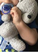 Lost Teddy bear on 06 Jul. 2018 @ Mitcham