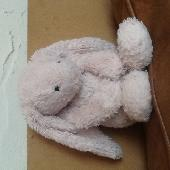 Found Jellycat bunny on 30 Jul. 2018 @ near Jenny Brown Point, Silverdale, Lancashire