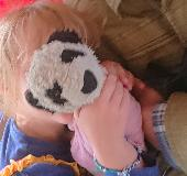 Lost Cuddly toy on 11 Aug. 2018 @ Cross country train from Glasgow to Reading