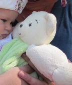 Lost Teddy bear on 07 Aug. 2018 @ DFDS Tor Line, Newcastle