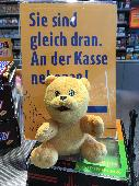 Found Teddy bear on 03 Sep. 2018 @ Oberhausen, Germany