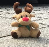 Lost Cuddly toy on 15 Oct. 2018 @ Airports schiphol