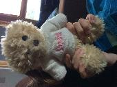 Found Teddy bear on 29 Oct. 2018 @ London