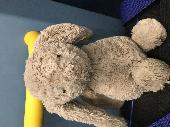 Found Toys & Games on 05 Nov. 2018 @ Lister hospital