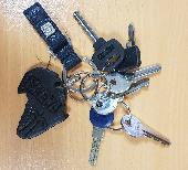 Found Keys & Cards on 21 Nov. 2018 @ Battersea