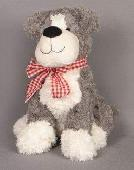 Lost Teddy doggy on 30 Nov. 2018 @ Fuertaventura