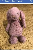 Found Cuddly bunny on 31 Dec. 2018 @ Newark Airport