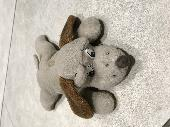 Found Stuffed dog on 10 Dec. 2018 @ Car park of Fairbairn House, Univeristy ofLeeds, LS2