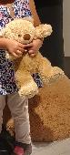 Lost Teddy bear on 29 Dec. 2018 @ Canterbury