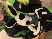 Found Cuddly toy on 15 Feb. 2019 @ Les Houches ski pass station