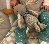 Lost Cuddly toy on 16 Feb. 2019 @ Manchester Victoria station