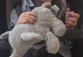Lost Cuddly toy on 17 Feb. 2019 @ les gets