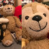 Lost Teddy bear on 17 Feb. 2019 @ Snowville, Idaho or Burley, Idaho