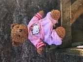 Found Teddy bear on 22 Feb. 2019 @ Easby Abbey