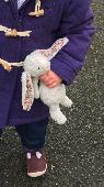 Lost Jellycat bunny on 08 Mar. 2019 @ Exmouth