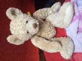 Found Teddy bear on 09 Mar. 2019 @ Near MK437PS, footpath north of river