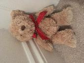 Found Teddy bear on 11 Mar. 2019 @ Avenue Rd, Cobham, KT11