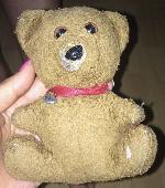 Lost Teddy bear on 15 Mar. 2019 @ Airport Bangkok or Austria