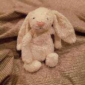 Lost Jellycat bunny on 25 Feb. 2019 @ Hampstead Heath adventure playground