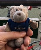 Lost Teddy bear on 28 Apr. 2019 @ Venise