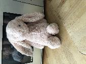 Found Jellycat bunny on 21 May. 2019 @ Boscombe overcliff drive, Boscombe, Dorset, UK