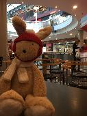 Lost Cuddly bunny on 17 May. 2019 @ Harrow