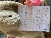 Found Jellycat bunny on 08 Jun. 2019 @ Near Holborn Tube station, London, UK