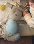 Lost Cuddly bunny on 09 Jun. 2019 @ Newry, Northern Ireland