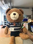Found Teddy bear on 01 Jun. 2019 @ 1398 Cartwright Street, Vancouver, BC V6H 3R9 Canada