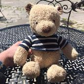 Found Teddy bear on 21 Jun. 2019 @ Poole Quay