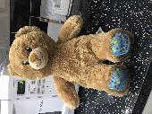 Found Teddy bear on 07 Jul. 2019 @ Manchester airport terminal 3