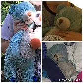 Lost Teddy bear on 28 Jun. 2019 @ 1400 Welton Street, Denver, CO