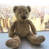 Lost Teddy bear on 12 Jul. 2019 @ New York City