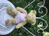 Found Teddy bear on 15 Jul. 2019 @ Kings Road, Kingston upon Thames