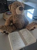 Lost Teddy bear on 13 Aug. 2019 @ Bental centre Kingston upon Thames