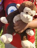 Lost Toy monkey on 31 Aug. 2019 @ Greenwich High Road , London, near railway station