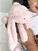 Lost Jellycat bunny on 08 Sep. 2019 @ Hitchin