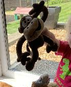 Lost Toy monkey on 29 Aug. 2019 @ Son Bou, Menorca