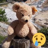Found Teddy bear on 17 Sep. 2019 @ Noboribetsu Onsen, Hokkaido, Japan.