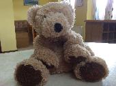 Found Teddy bear on 25 Sep. 2019 @ Chester Canal Basin at Tower Wharf