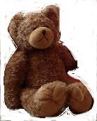 Lost Teddy bear on 02 Oct. 2019 @ Animal Kingdon Hotel - Disney