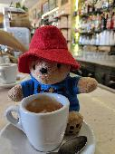 Lost Teddy bear on 06 Oct. 2019 @ Finsbury Park