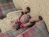 Lost Teddy bear on 17 Sep. 2019 @ Gloucestershire, UK
