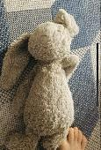 Lost Jellycat bunny on 15 Nov. 2019 @ Earls court